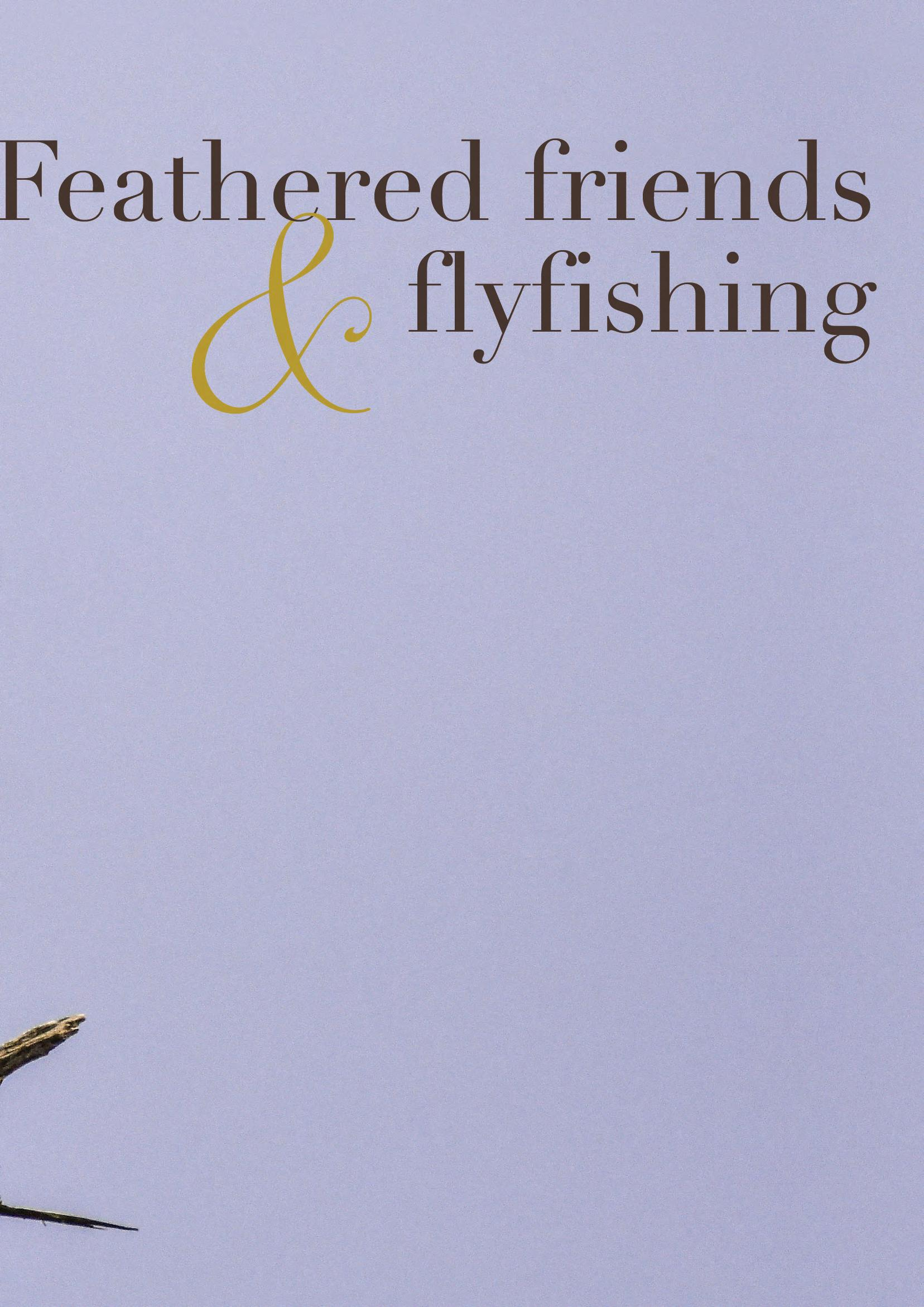 Page 38 of Birds and Flyfishing