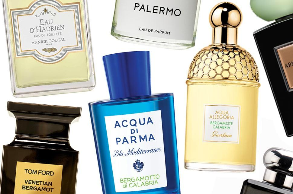 The powers of perfumes and smells -part 2 - Issuu