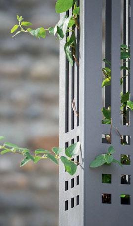 Read story: Plant-Based Lighting