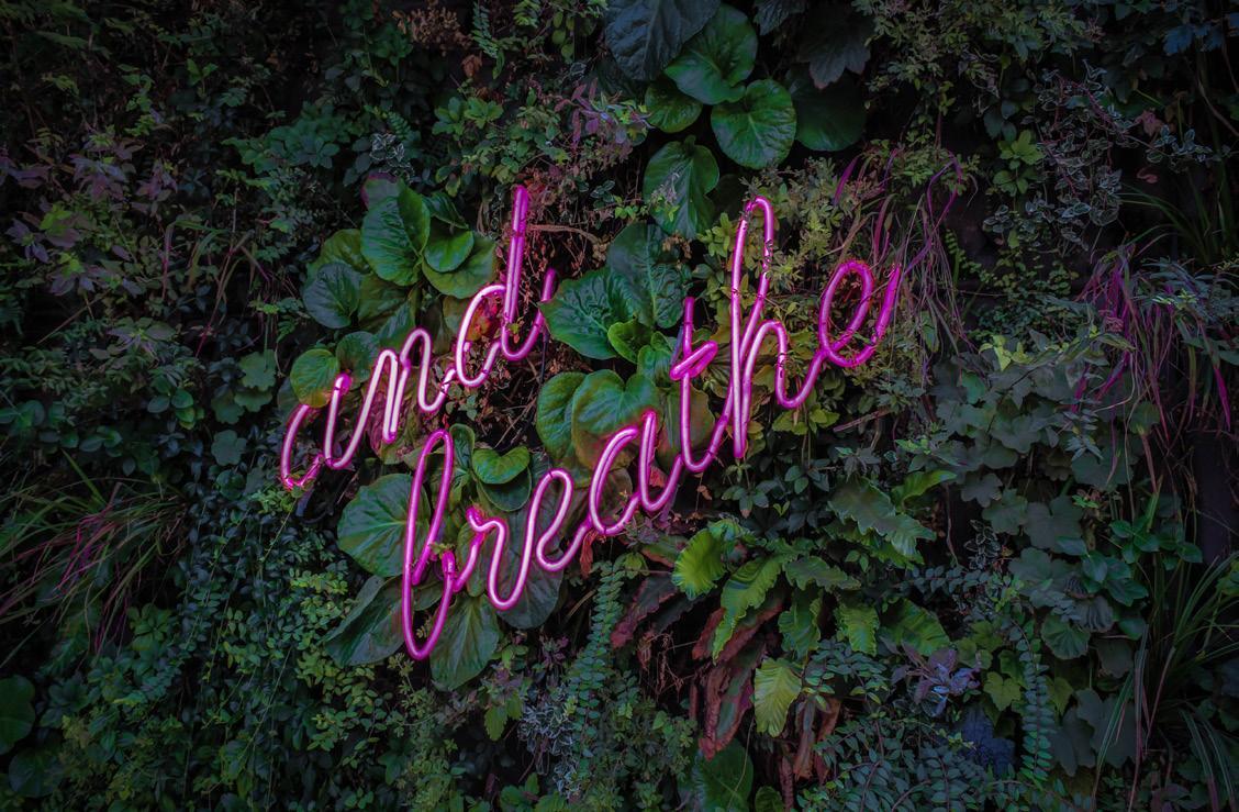 Page 25 of 4-7-8 Breath Technique