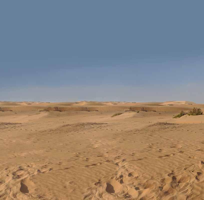 Page 54 of AN EMIRATES EXTRAVAGANZA EXPLORING ABU DHABI - DUBAI - SHARJAH