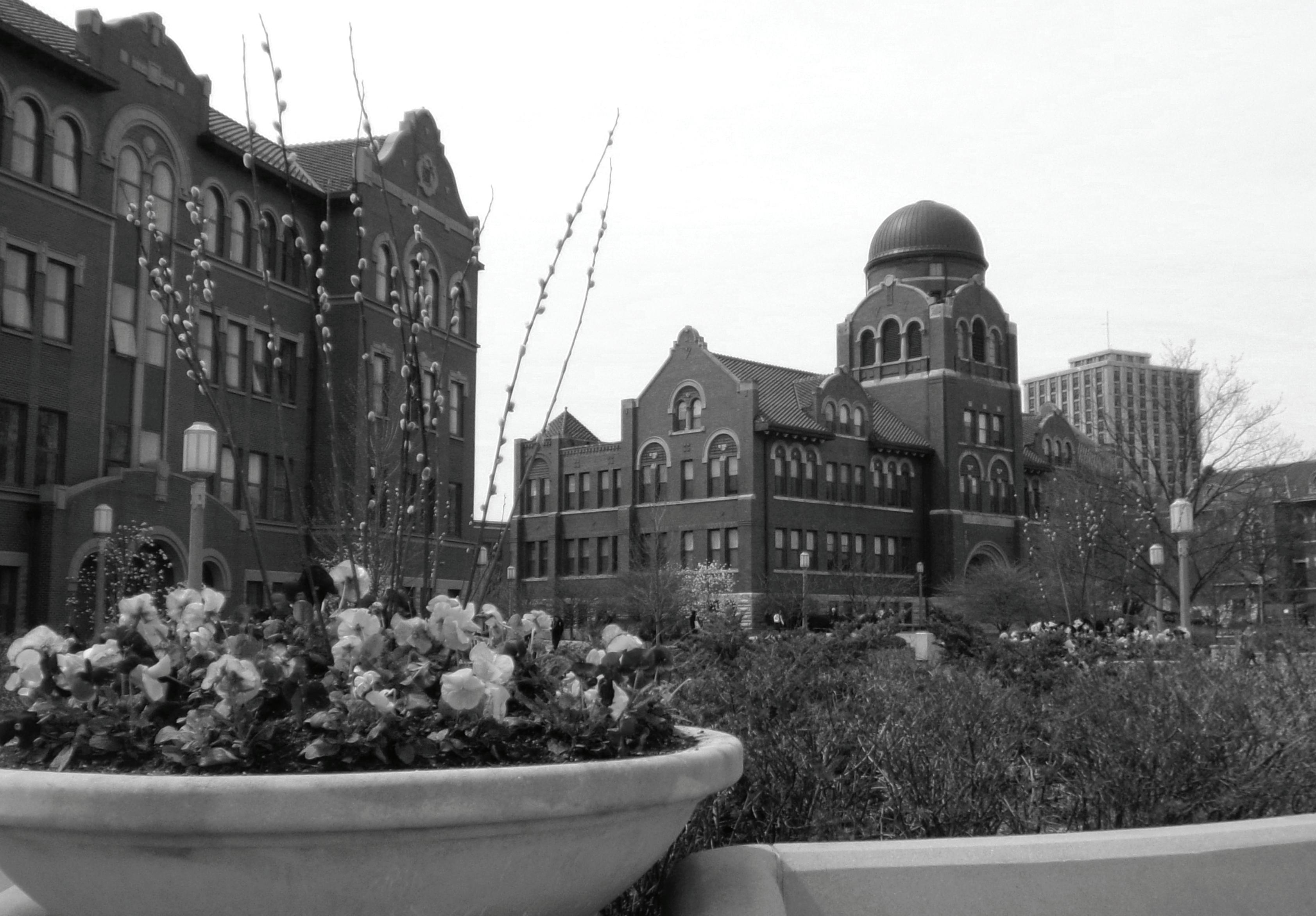 Page 6 of Loyola should nix ACT/SAT requirement for applicants