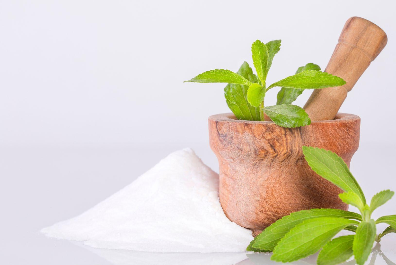 Page 33 of Stevia and its many uses