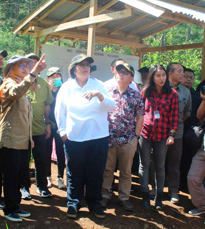 Page 12 of Rehabilitasi Hutan, Lindungi Lingkungan
