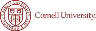 Page 4 of CARE: An update on Hoyleton's partnership with Cornell University and the implementation of a new, innovative trauma-informed practice mode
