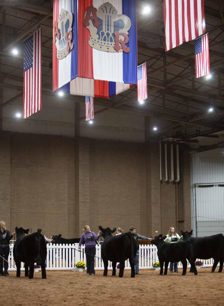 Page 22 of American Royal Show Reports
