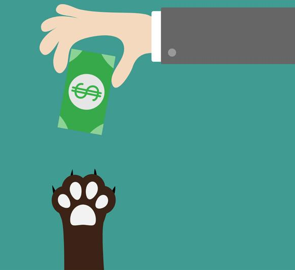 Page 36 of Financing Your Furry Friends
