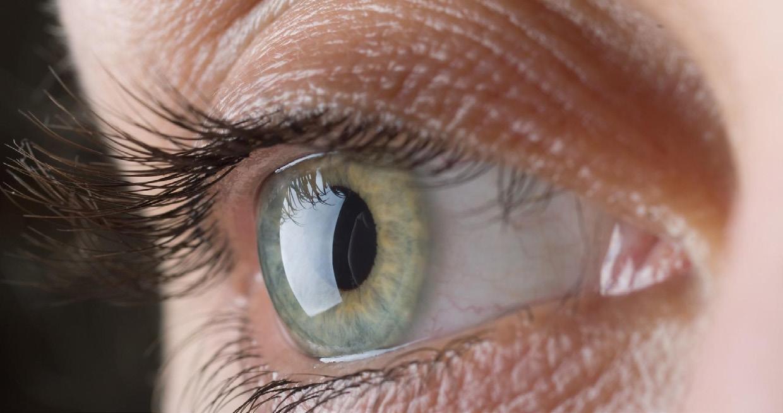 Page 12 of La importancia de la luteína para la salud ocular y cerebral