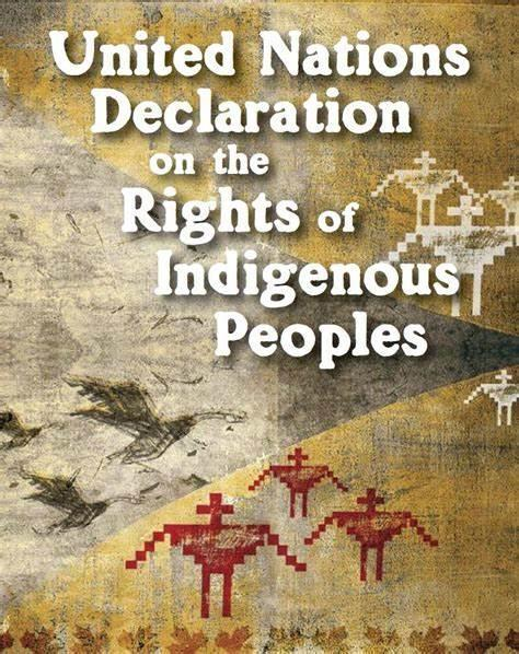 Page 22 of UNDRIP Implementation and the Wet suwet en