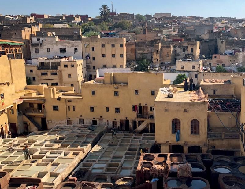 Page 44 of STEP BACK IN TIME: WE VISIT FES