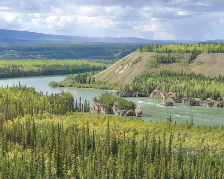 Page 20 of Le Yukon, joyau sauvage du Canada