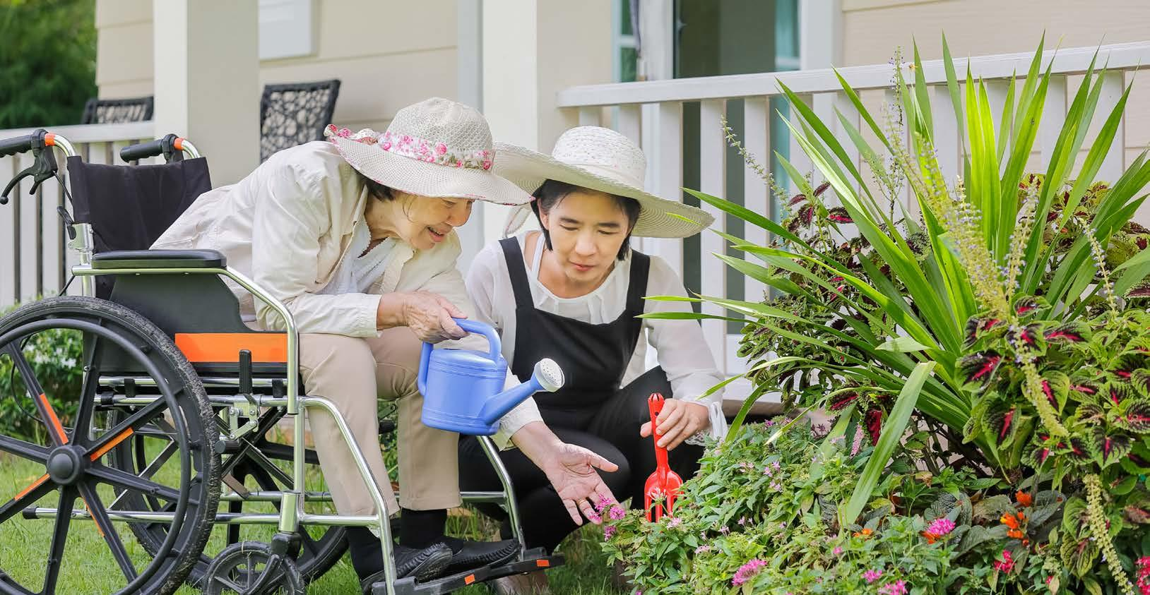 Page 21 of ADAPTIVE GARDENING: REMOVING LIMITATIONS