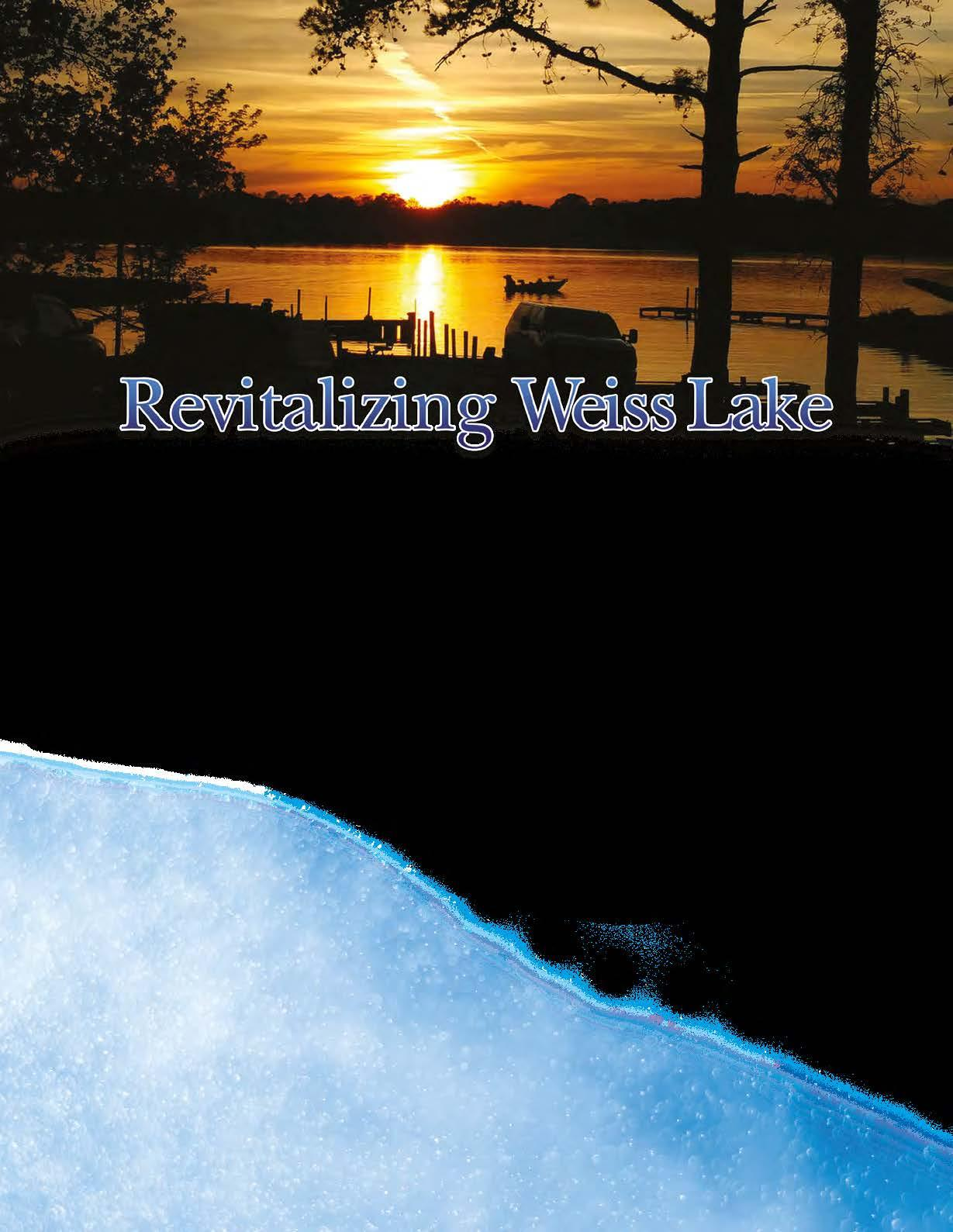 Page 32 of Revitalizing Weiss Lake