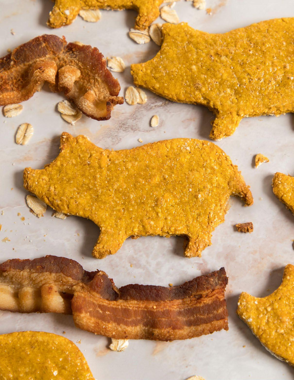 Page 16 of Bacon and Pumpkin Dog Cookies