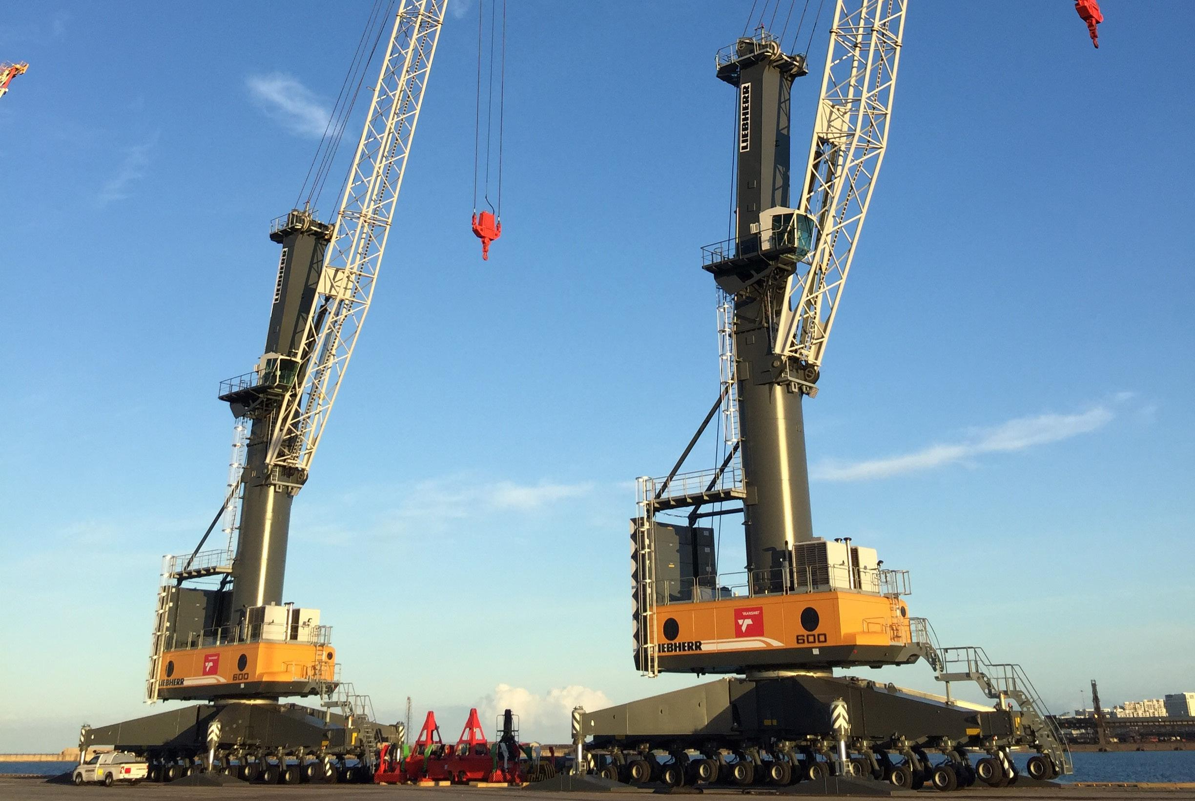 Page 4 of As reefer season begins with two brand new cranes in Port Elizabeth