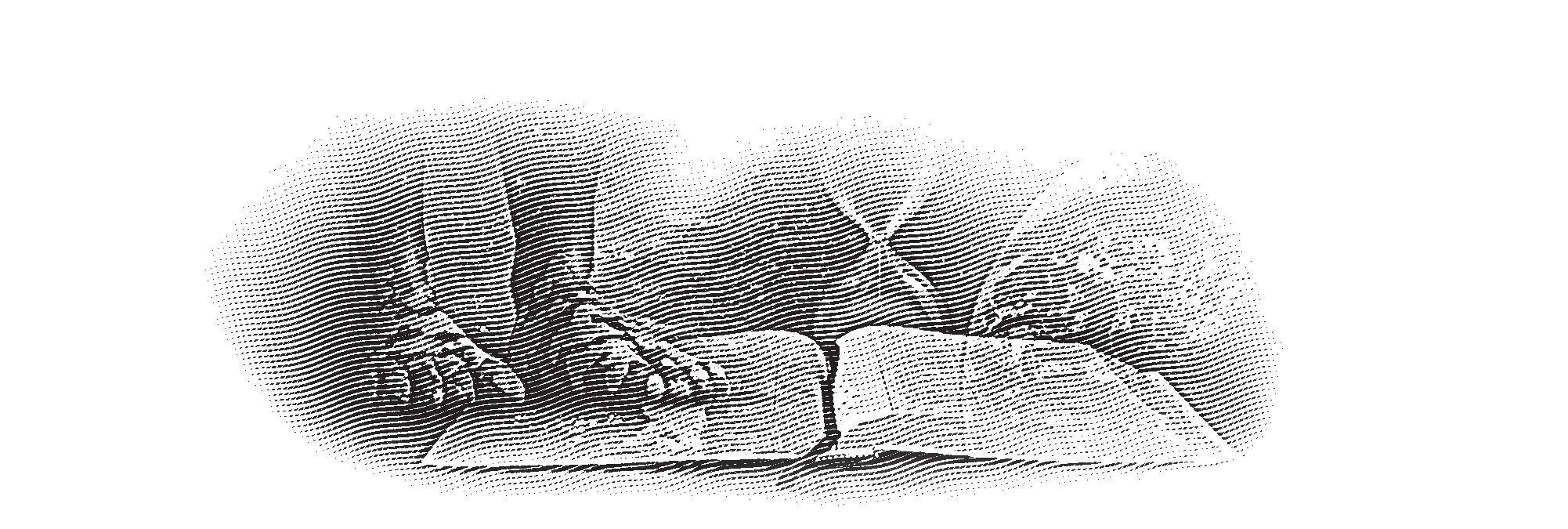 Page 88 of Bibelen og profetiene