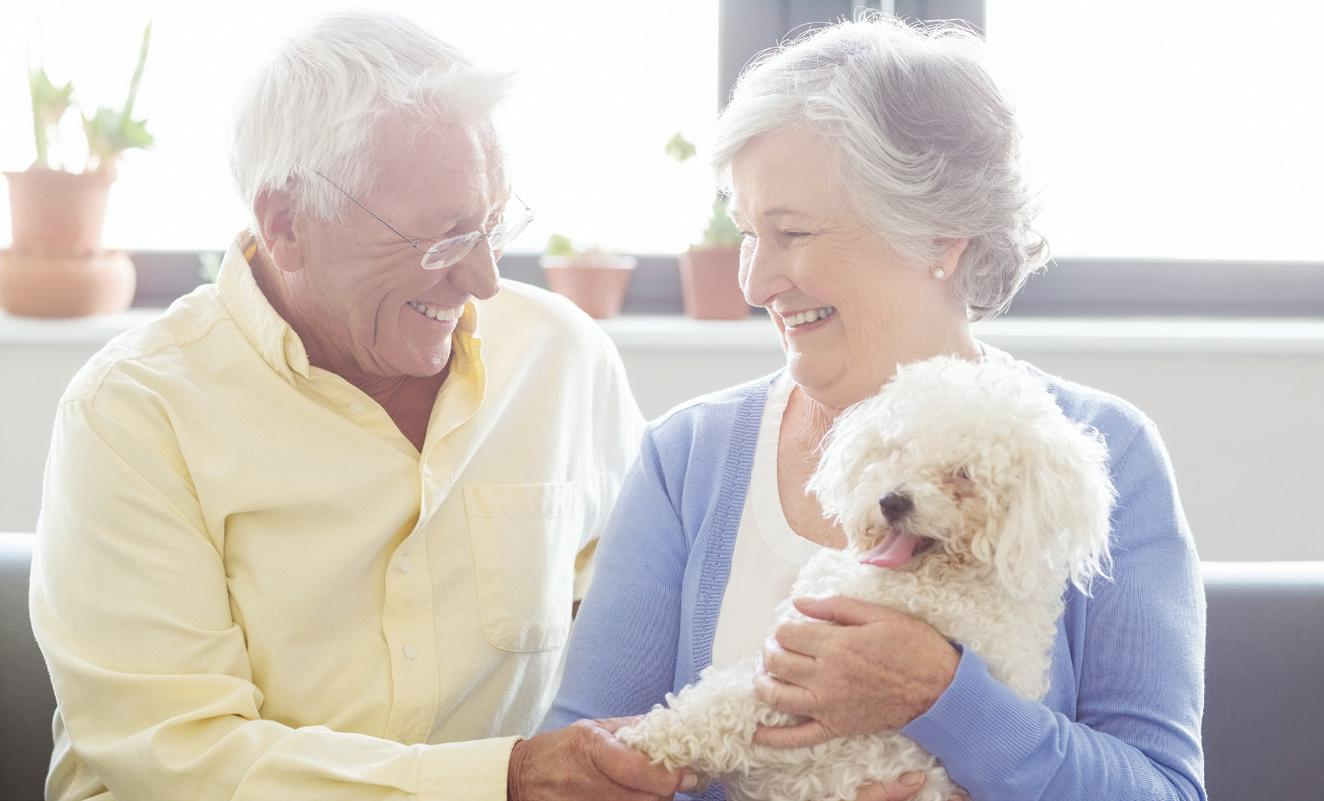 Page 16 of Reasons Why Older People Need Pets