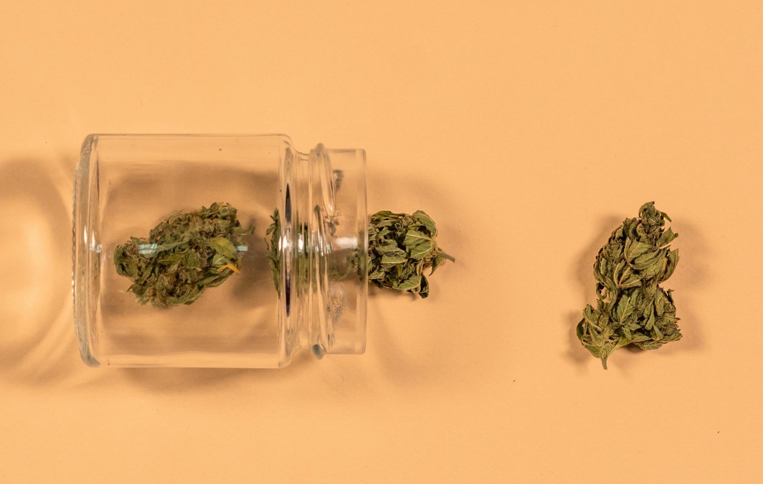 Page 42 of Ist für Cannabis Tabaksteuer zu bezahlen?