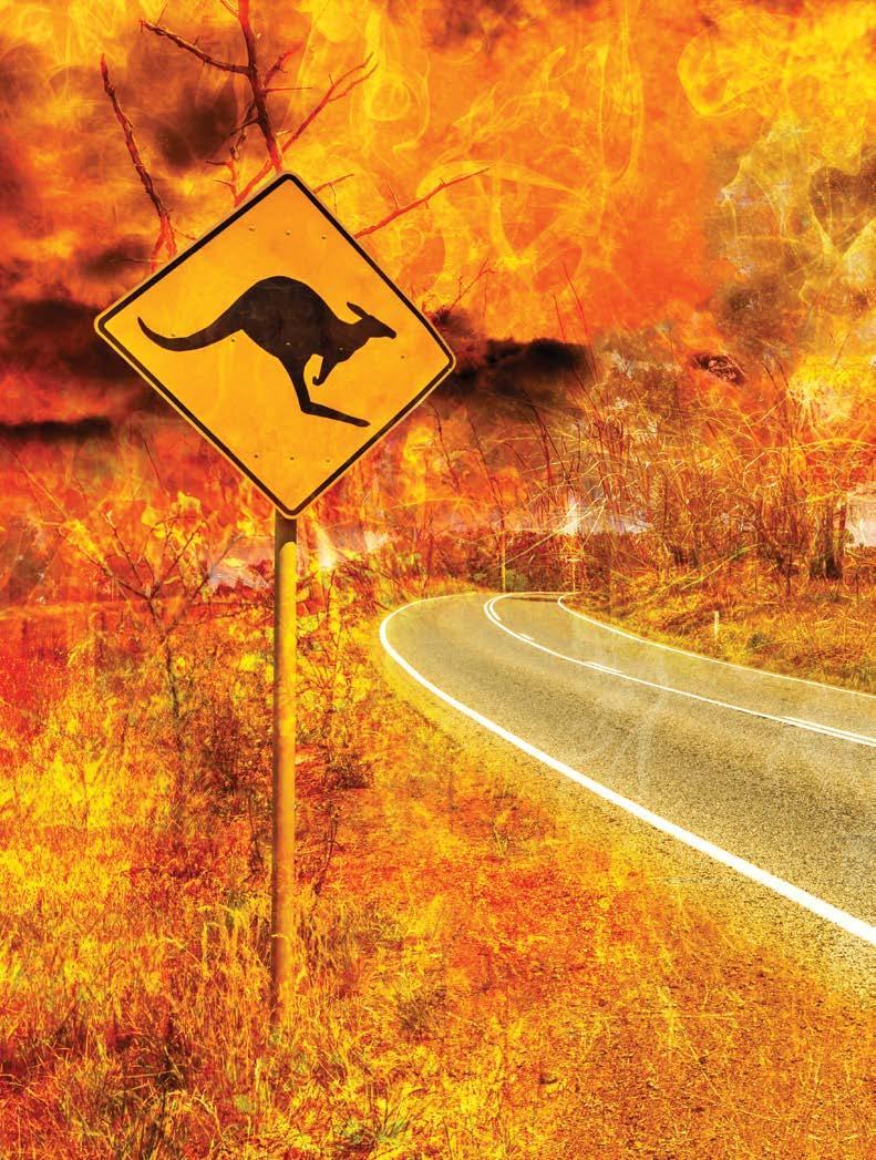 Page 36 of AUSTRALIA