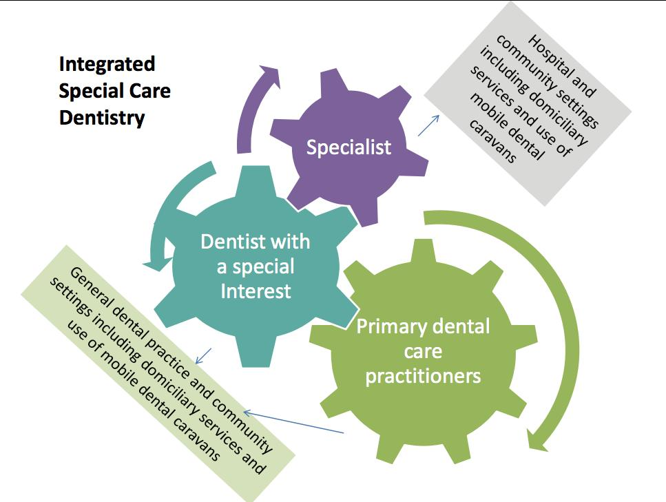 Page 12 of The South Australian Dental Service Special Needs Dentistry Network