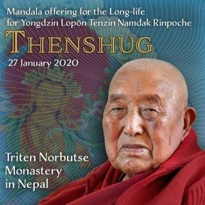 Page 8 of Tenshug for H.E. Yongdzin Lopon Tenzin Namdak Rinpoche