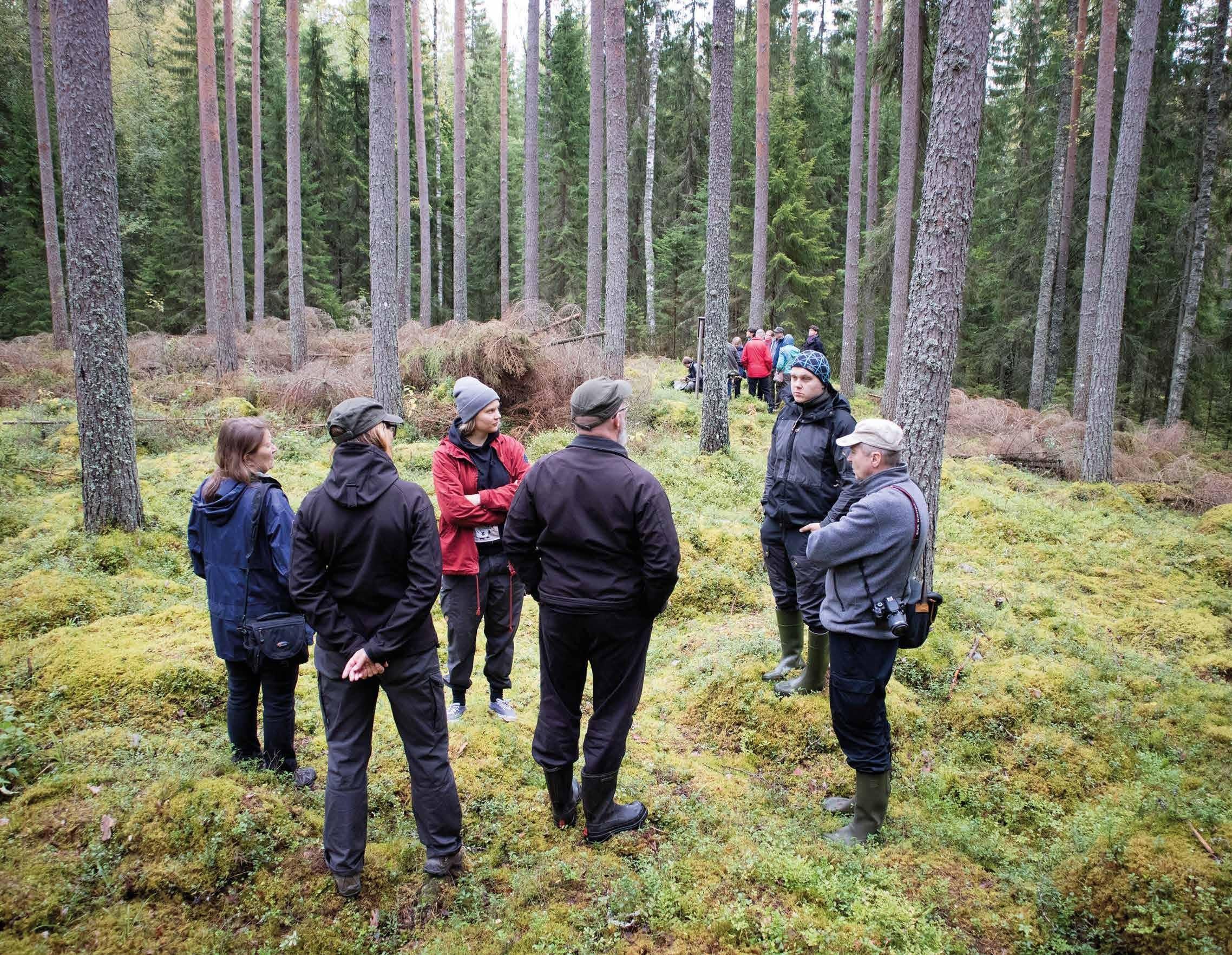 Page 72 of Pekka Virtanen Puheenvuoro: Metsä antaa, mitä metsällä on