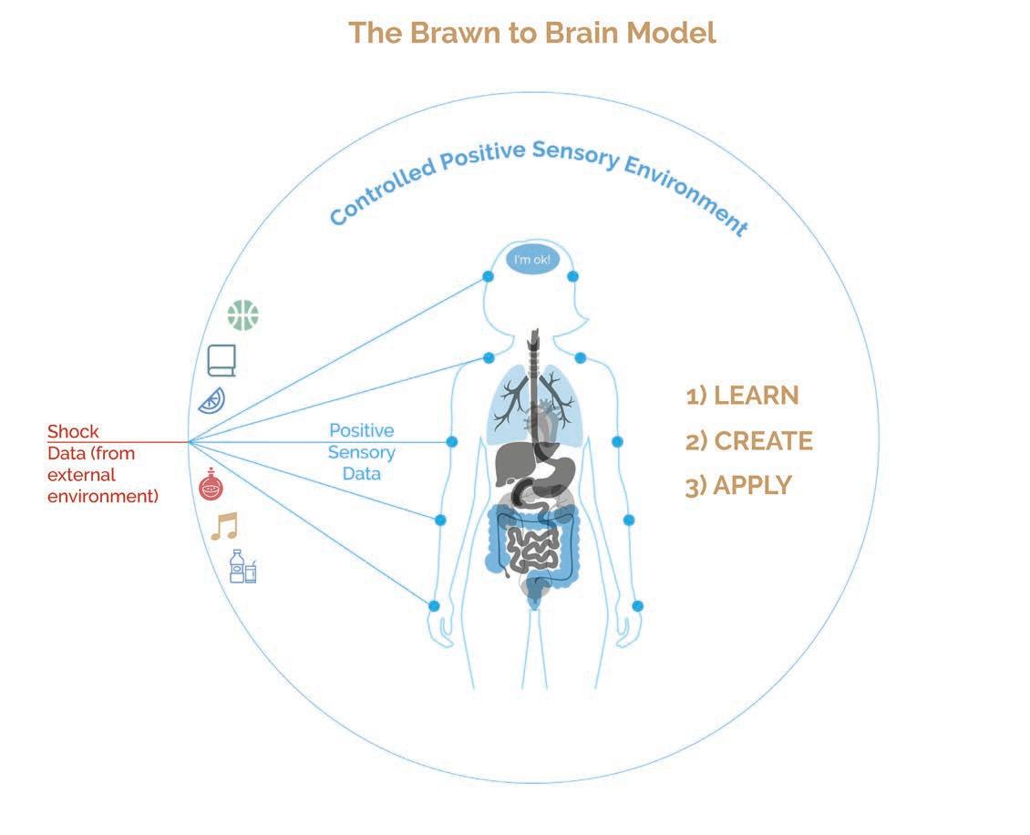 Page 12 of Brawn to Brain in 3 steps