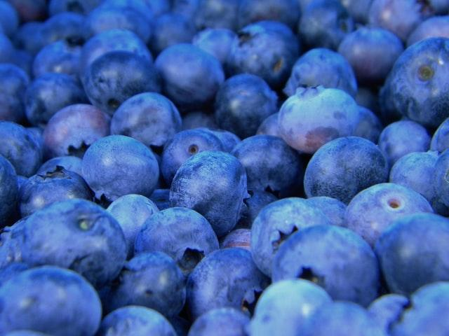 Page 6 of Sarosh Nandwani blueberry cataclysm