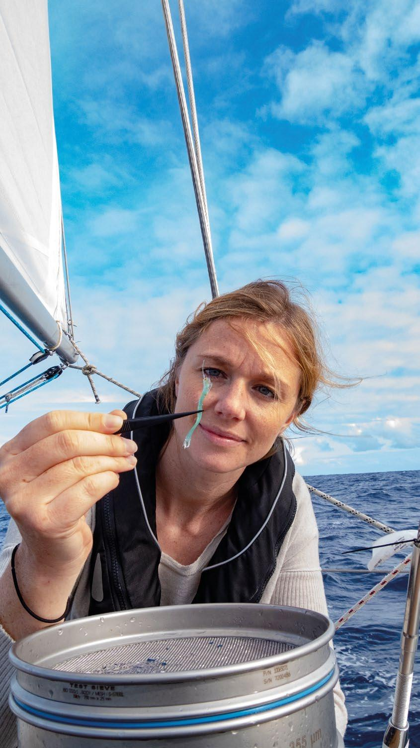Page 12 of eXXpedition Voyage into ocean plastics