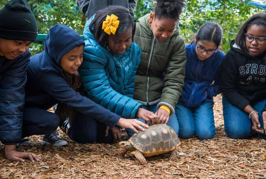 Page 20 of Houston Zoo wins top award for education