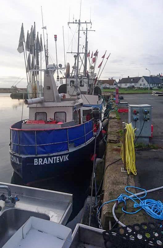 Page 24 of Skåne satsar på lokal fisk