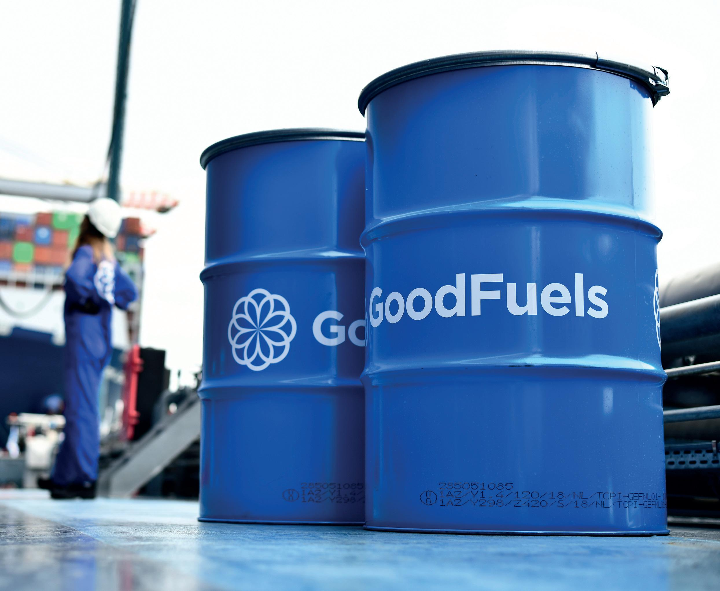 Page 32 of The role of renewable marine fuels