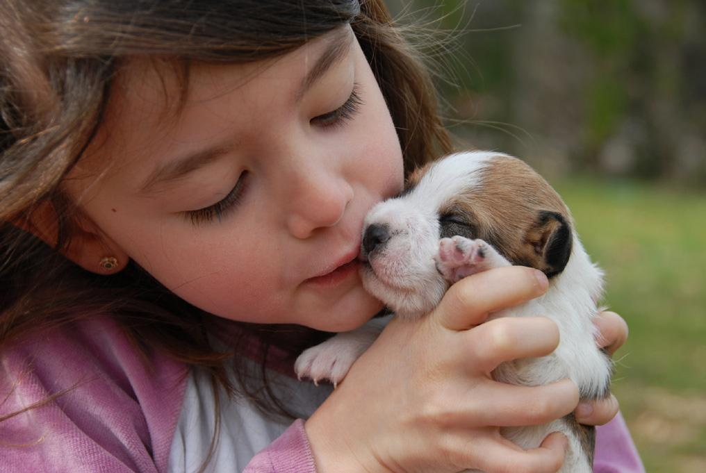 Page 12 of Puppy Nutrition for Healthy Growth and Development