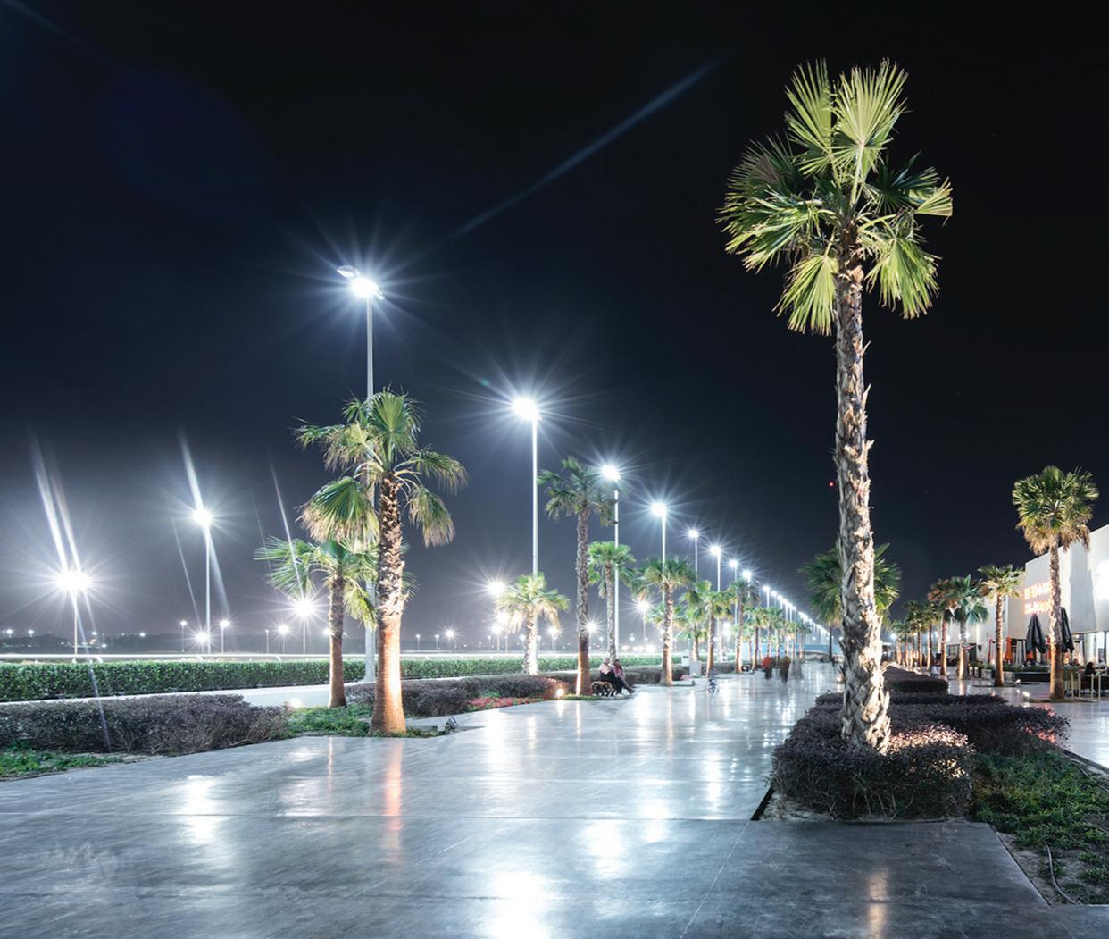 Page 10 of Murouj urban park will bloom again