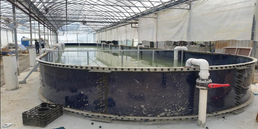 Page 16 of Aquaculture Update