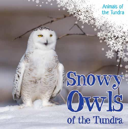 Page 6 of Animals of the Tundra