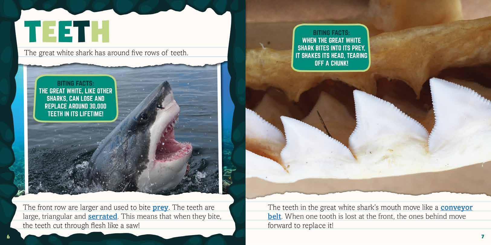 Page 10 of Teeth to Tail