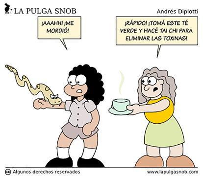 Page 41 of La pulga snob