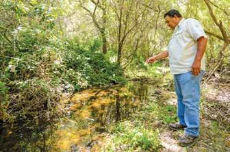 Page 26 of Trout return – First San Benito river sighting in 75 years attributed to reclamation work