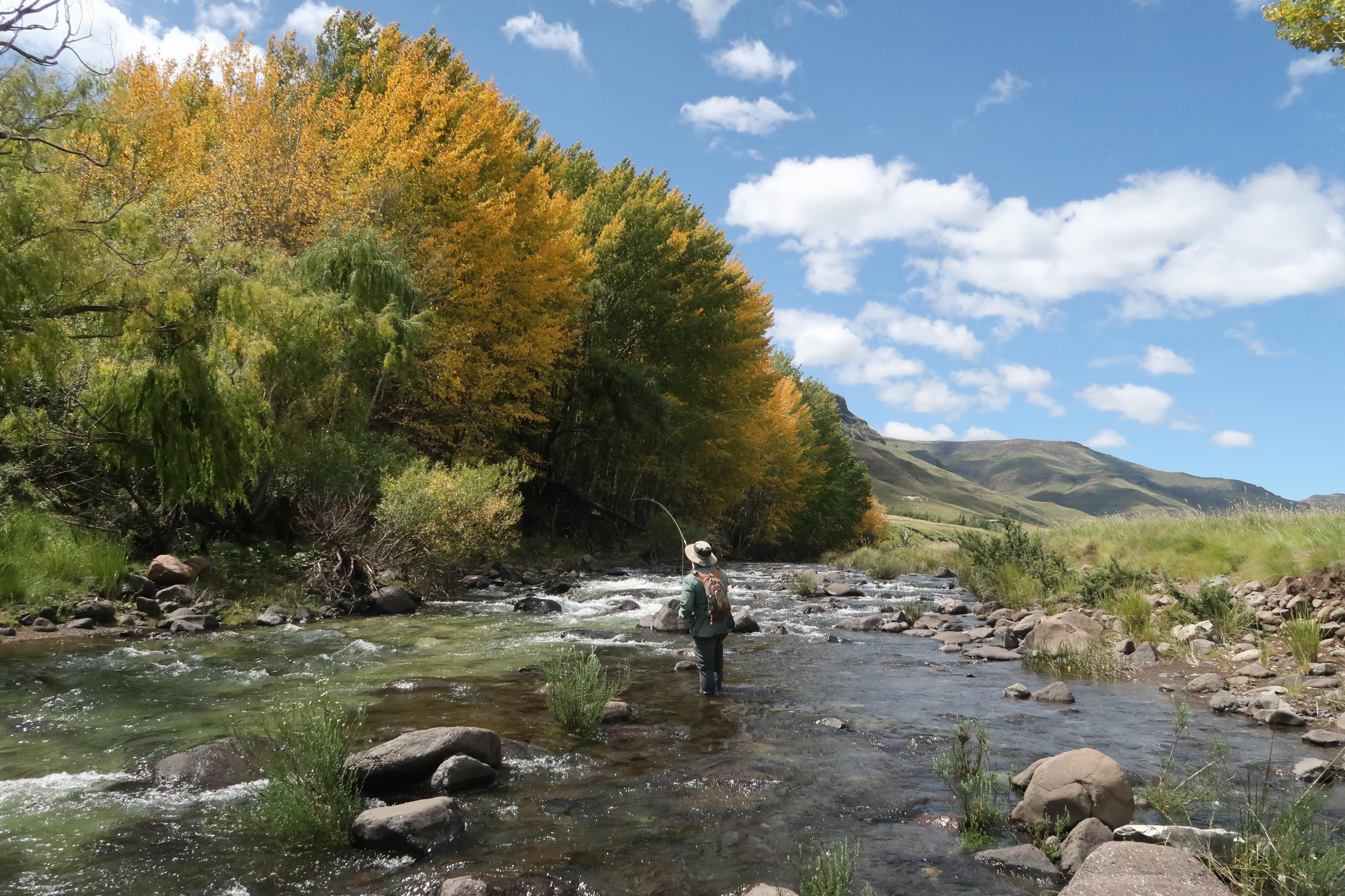 Page 34 of The Dirt Road Wild Trout Association Title Fly Fishing Festival 2021 written by First Second Name Photos: other name Dave Walker