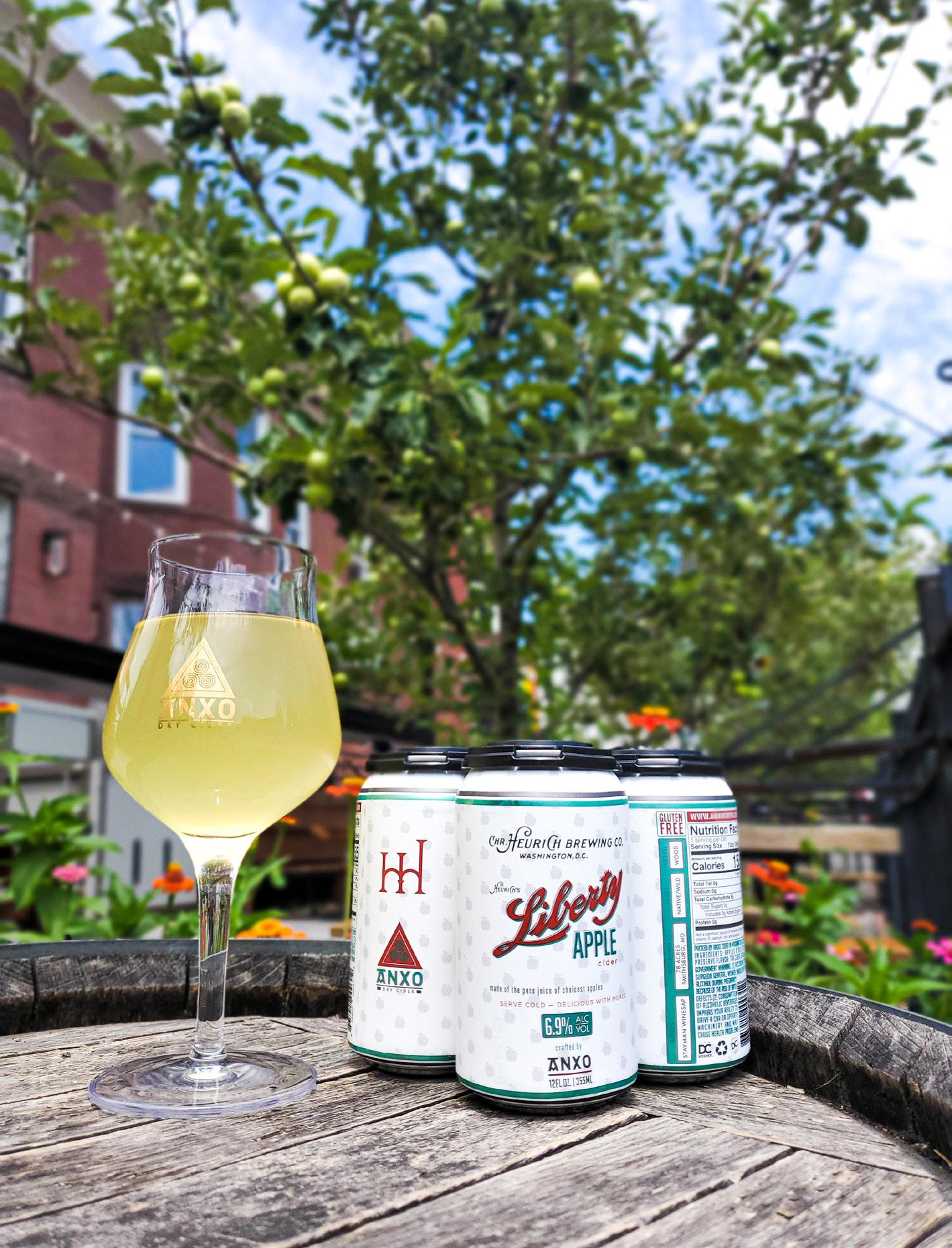 Page 22 of DRINK // ANXO Cidery + Heurich House Museum Collaborate on Prohibition-Era Cider
