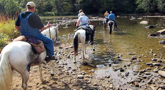 Page 9 of Horseback Riding In Big South Fork