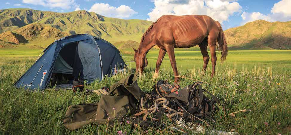 Page 10 of Camping With Your Horse