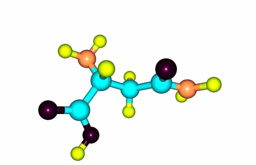 Page 24 of Tilfældige mutationer kan ikke opbygge DNA-information