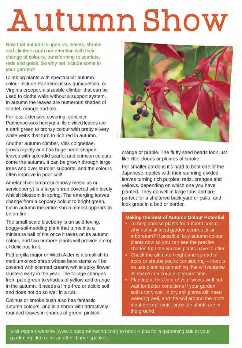Page 18 of Garden Feature: Autumn Show