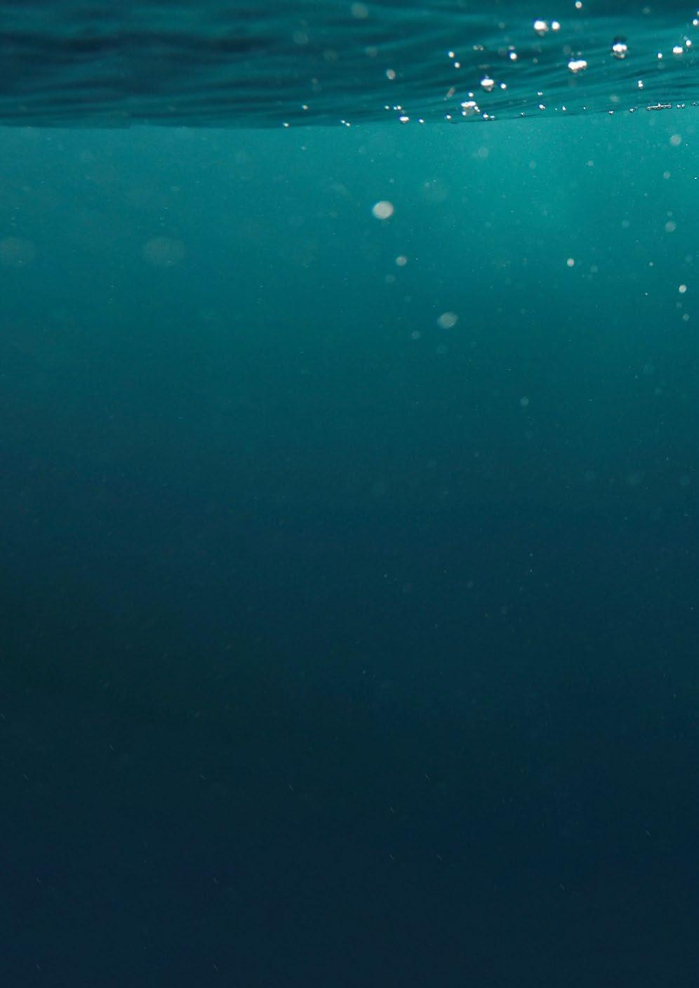 Page 18 of Film-Ocean Invests Further in New Work Class ROV