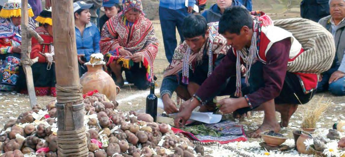 Page 14 of Indigenous Resilience: From the Mongolian Steppes to the Andean Mountains