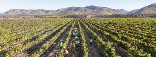 """Page 3 of """"Facts From Farmers"""" proporcionará una mirada de primera mano al sector agrícola local"""