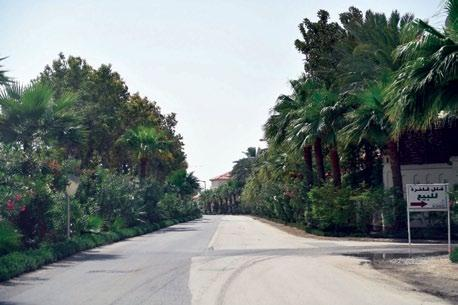Page 16 of Bahrain streets set to be beautified