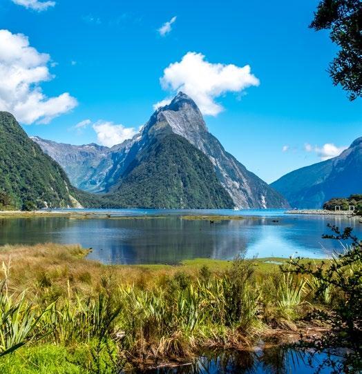 Page 82 of AUSTRALIA & NEW ZEALAND
